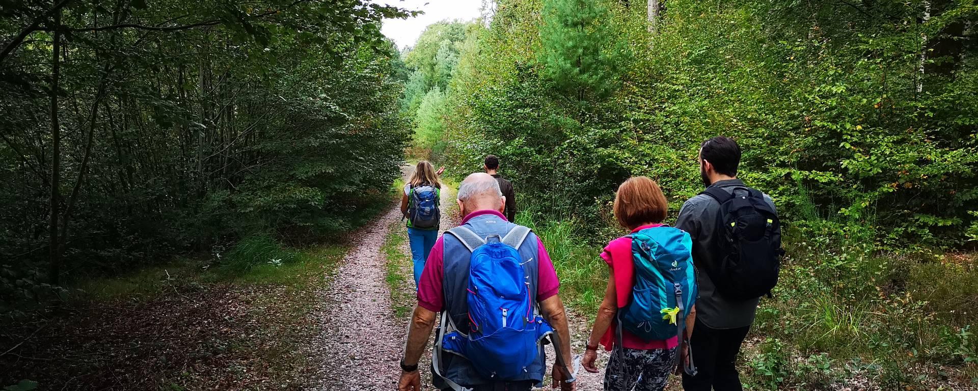 Randonnée avec Albane Sortie des routes - Randonner à Epinal et autour - Accompagnateur randonnée Epinal