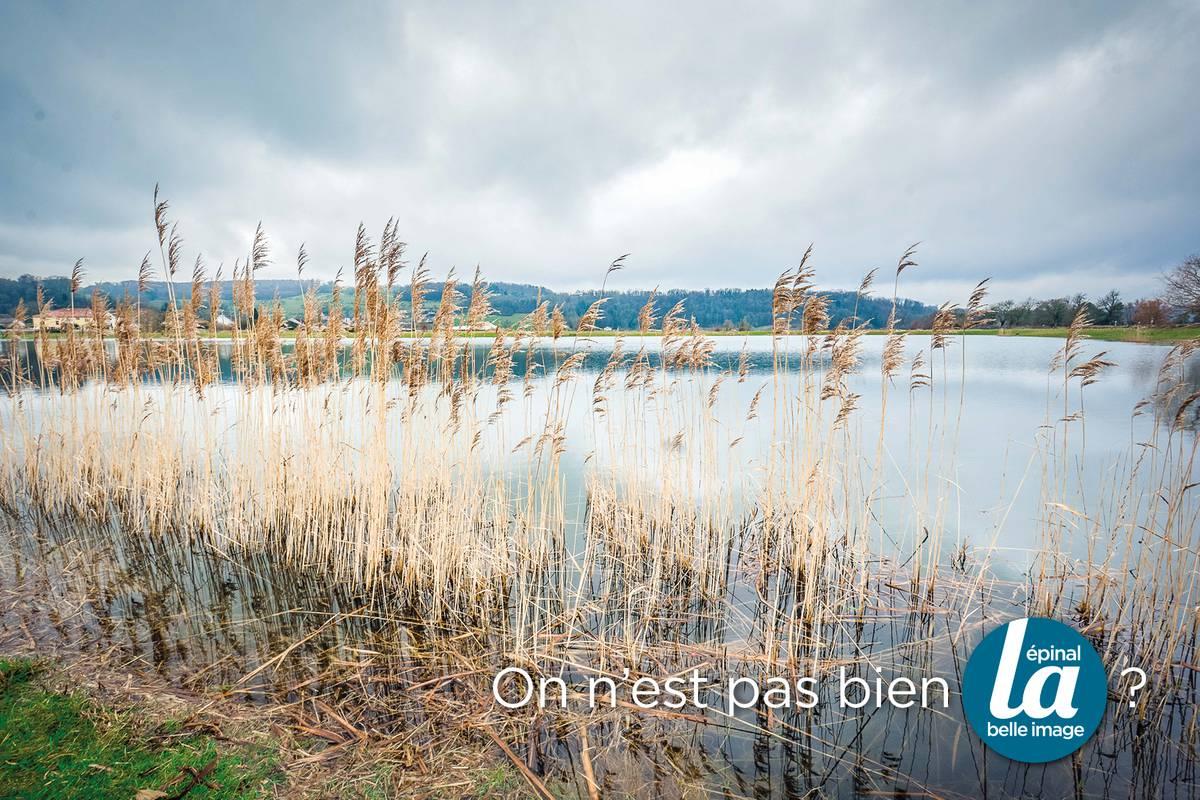Les étangs de Socourt