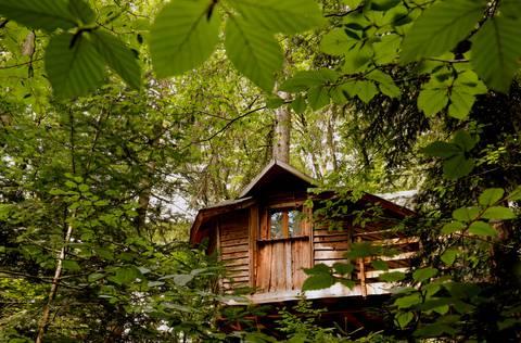 Bonnes adresses Vosges - Hébergements Epinal - logement Epinal - Restaurant Epinal