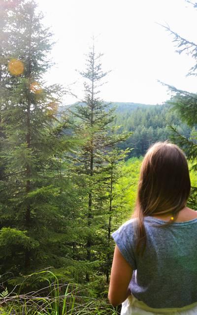 Randonnée Vosges - Accompagnateur moyenne montagne - Randonnée Epinal - Sentier Epinal