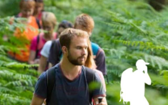 Les randonnées au coeur des Vosges