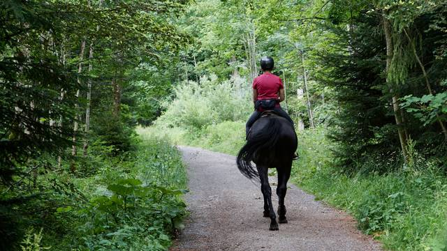 Randonnée à cheval - Balade à cheval Vosges - Itinérance à cheval