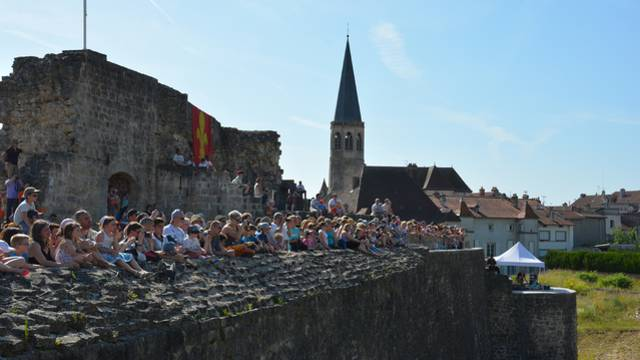 Forteresse de Châtel sur Moselle - Forteresse Vosges - Patrimoine Vosges