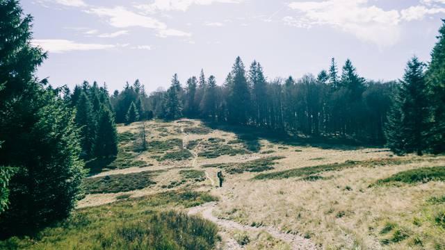 Randonnée Hautes-Vosges - Randonner en montagne, Vosges - Circuit randonnée Vosges