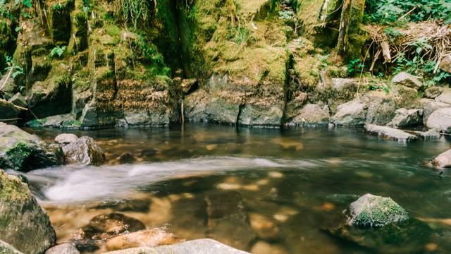 Randonnée Vosges - Cours d'eau Epinal - Point d'eau en forêt Epinal