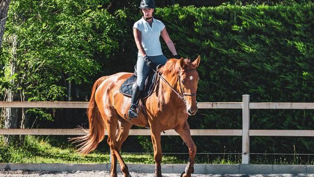 Centre équestre Epinal - Cours d'équitation Epinal - Balade à cheval - Randonnée à cheval - Faire du cheval