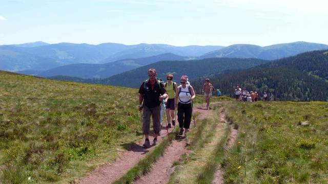 Randonnée sur les Crêtes - Randonnée Hautes Vosges - Sommet des Vosges