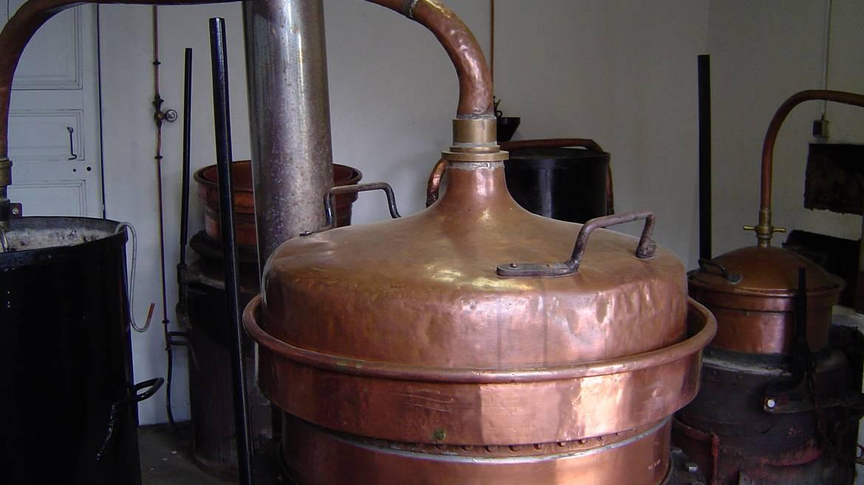 Étape 4 : 15h30 – Visite de la Distillerie Riondé de Saint-Baslemont
