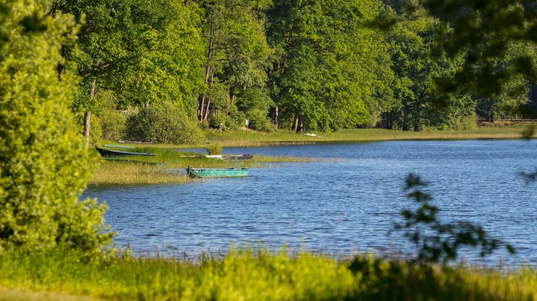 Étape 2 : 15h00 – Balade à vélo jusqu'au lac de Bouzey