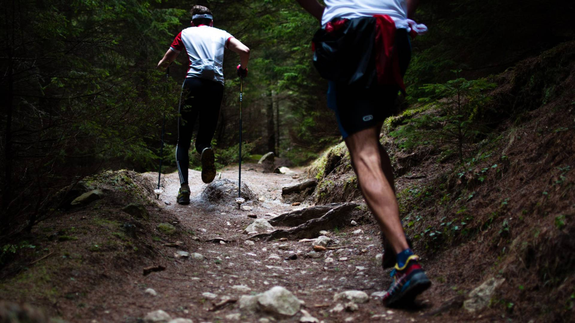 Trail Vosges - Sortie sportive Vosges