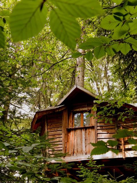 Nuits insolites Vosges - Ferme Aventure - Cabane dans les arbres Vosges