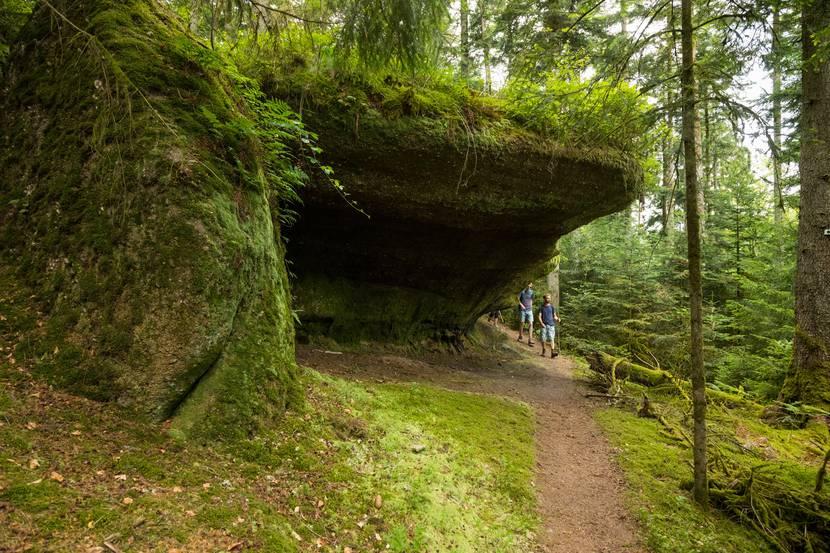 Passage sous les coteaux à flanc de colline - Randonnée Epinal