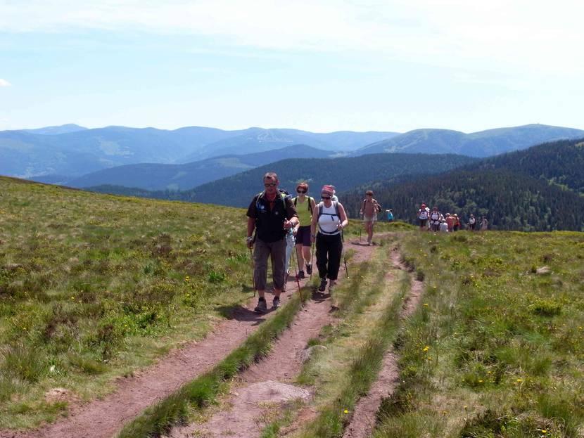 Marche nordique exercée en montagne - Marche nordique Hautes-Vosges