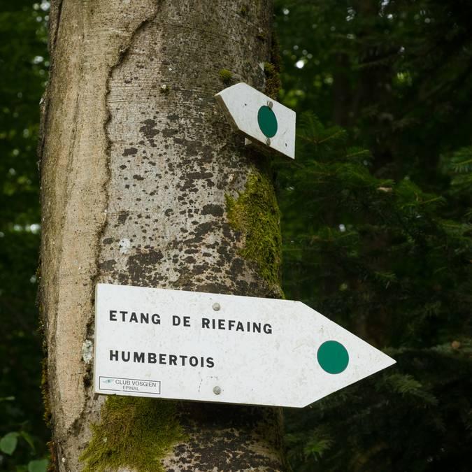 Circuit de randonnée vers l'Etang de Riefaing