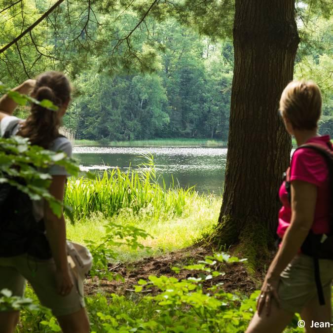 Randonnée au bord du lac