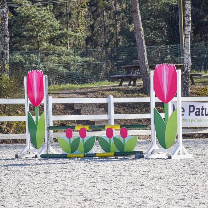 Centre équestre Epinal - Cours d'équitation Epinal - Balade à cheval - Randonnée à cheval - Faire du cheval - Saut d'obstacles